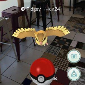 PokemonGo21.jpg